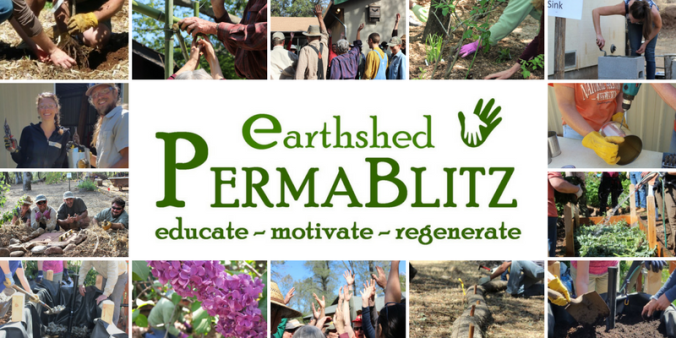 PermaBlitz cover collage